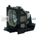 Go with original replacement projection lamps